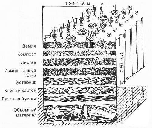 Схема устройства грядки на компостной яме.