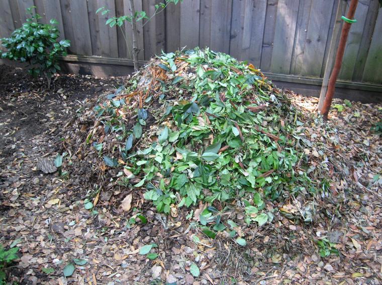 Самый простой способ приготовить органическое удобрение – компостная куча.